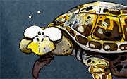 Du bioplastique pour les tortues